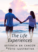 the life experience regalo feb 20 front